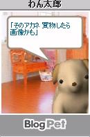 keyaki-001270s.jpg