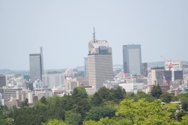 keyaki-00820fs.jpg