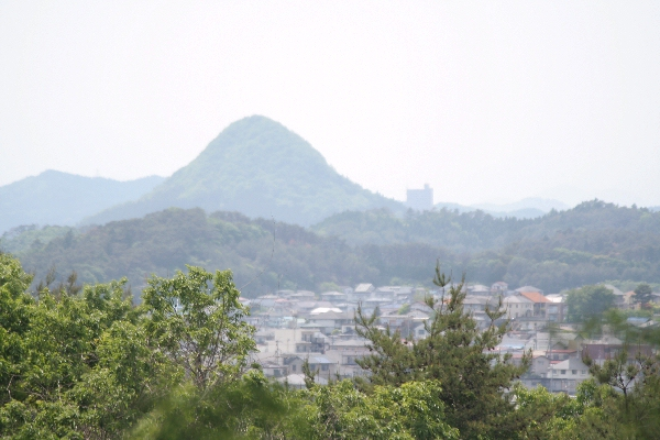 keyaki-00821fs.jpg