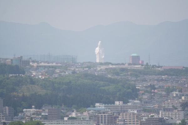 keyaki-00822fs.jpg