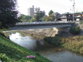 2007_1110公園0021