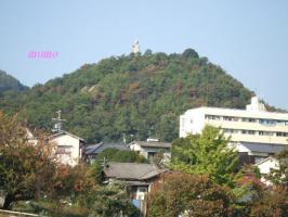 2007_1110公園0019