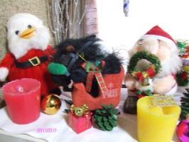 2007_1202クリスマス0018