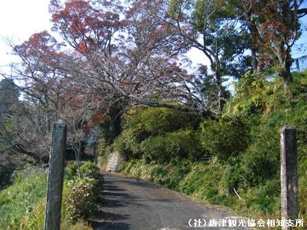 hirayama2007111701.jpg