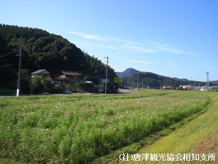 yamasaki2007100402.jpg