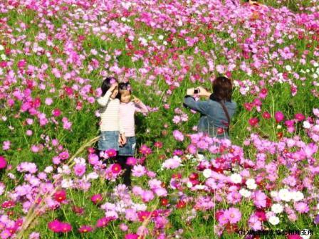 yamasaki2007102104.jpg