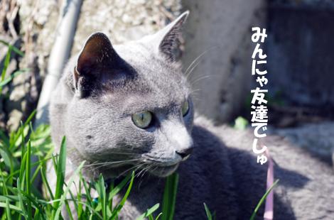 2011051211.jpg