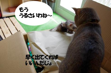 2011051804.jpg