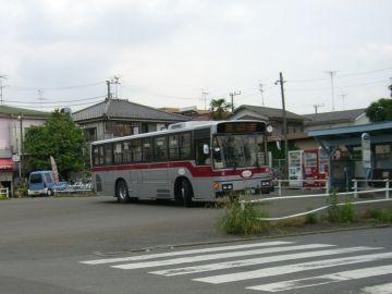 CIMG0855.jpg