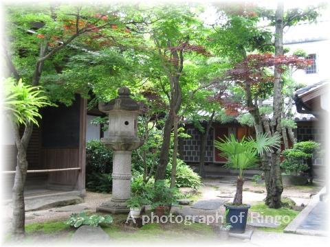 いかしの舎 庭