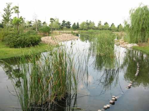 自然環境体験公園
