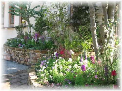 レオーニのお庭