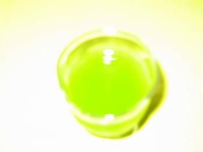 ゴーヤジュース ロマネスクH19.7.8