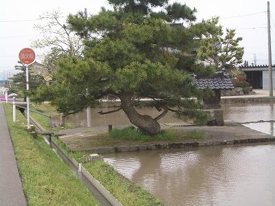 浅地神社前