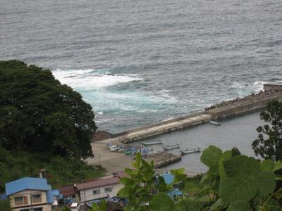 IMG_5551上からの漁港