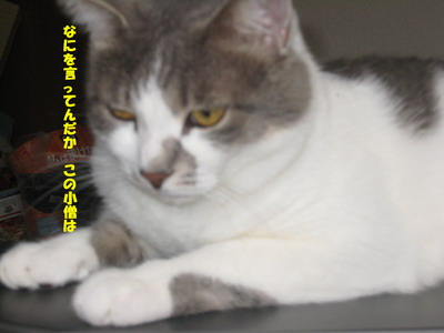 IMG_5631ぽん