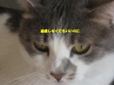 IMG_5643ぽん