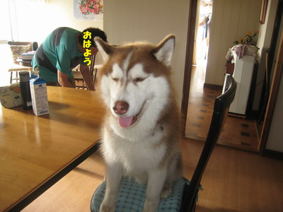 IMG_5849朝