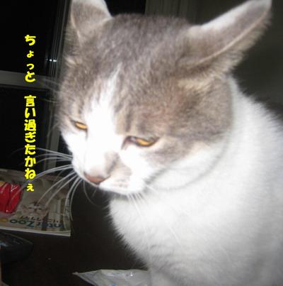 IMG_5881ぽん
