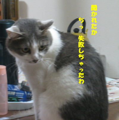 IMG_5887ぽん