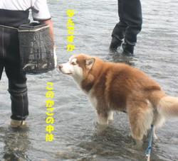 IMG_6113キーと漁師