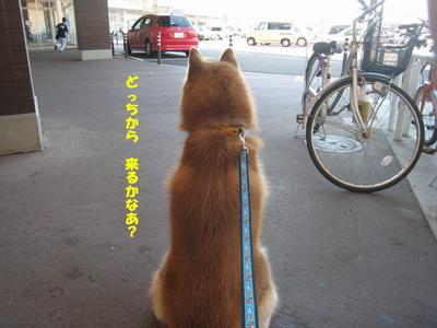 IMG_6329小僧