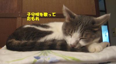 IMG_6936女王ぽん