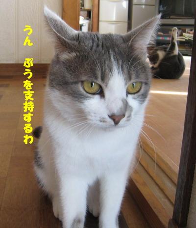 IMG_7359ぽん