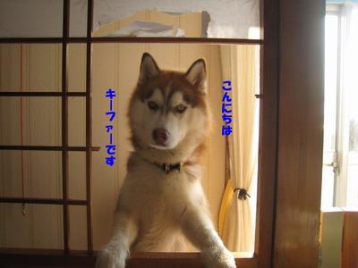 IMG_8163キーファー