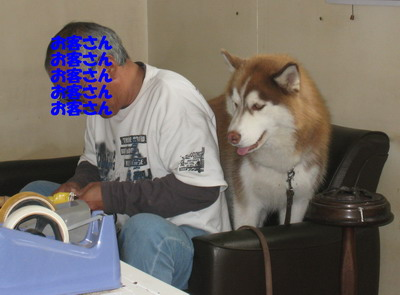 IMG_8364初仕事