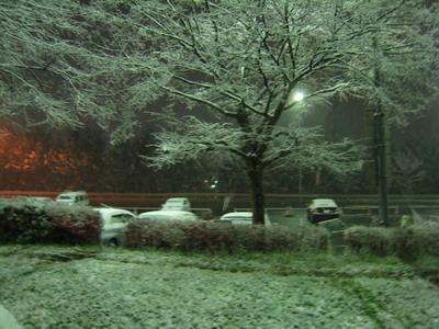 IMG_8778雪