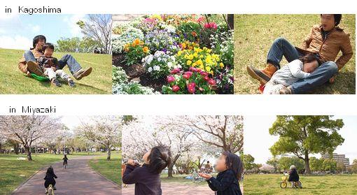 きゃべちゃんとはっちの春休み