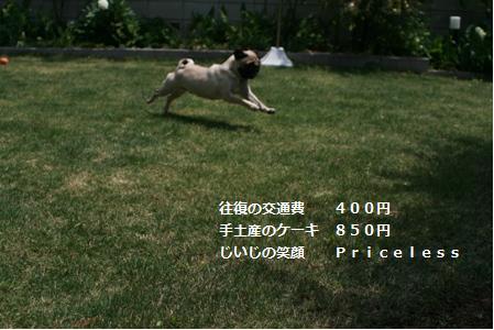 20070511220025.jpg