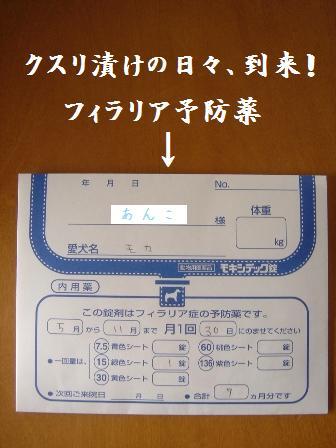 20070515160610.jpg