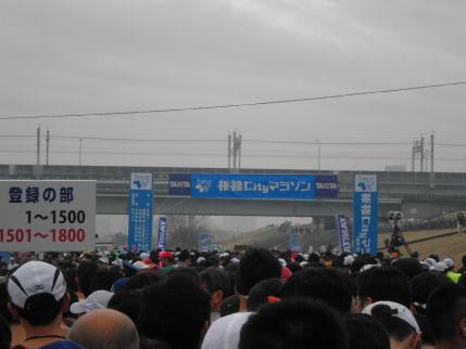 P3180015-icm.jpg