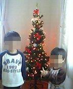 20061112クリスマスツリー