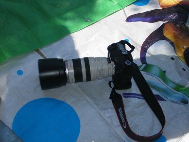 望遠レンズのカメラ