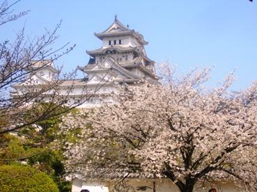 春色づく姫路城