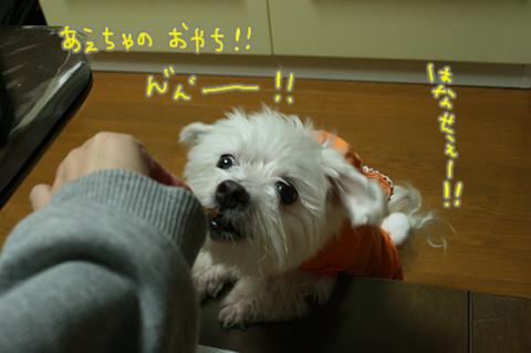 IMG_3540.jpg