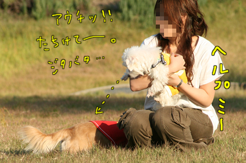 IMG_4343-1.jpg