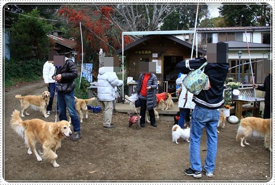 2011,12,27みかん狩り2