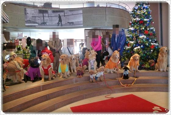 2011,12,30クリスマス旅行22