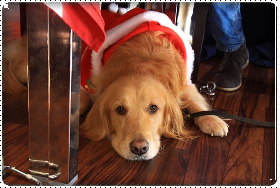 2011,12,30クリスマス旅行28