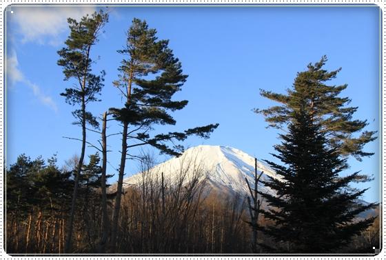 2011,12,31クリスマス旅行1