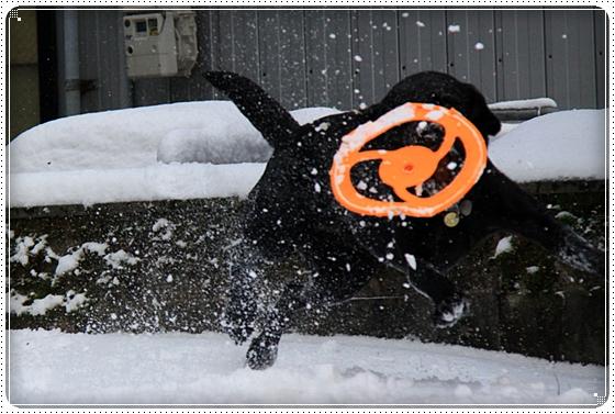 2012,2,2雪10