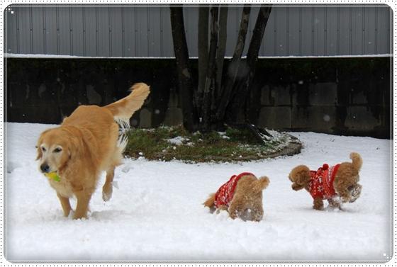 2012,2,18雪4