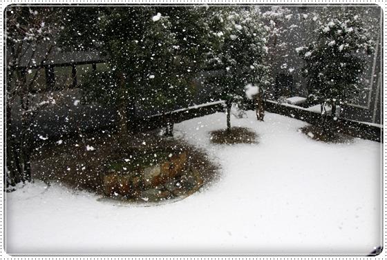 2012,2,18雪1