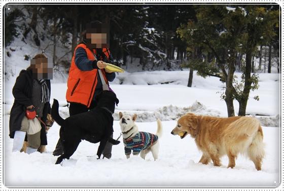 2012,2,19雪遊び4