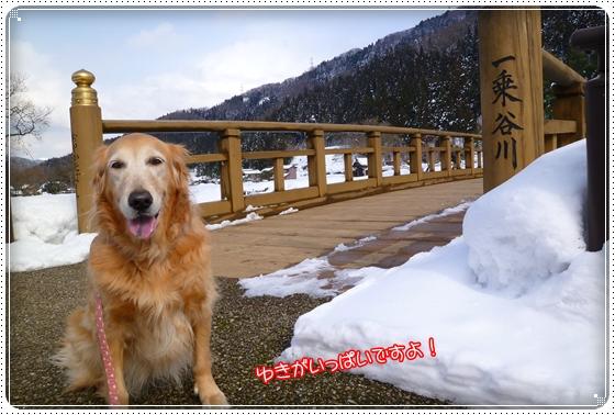 2012,2,19雪遊び3