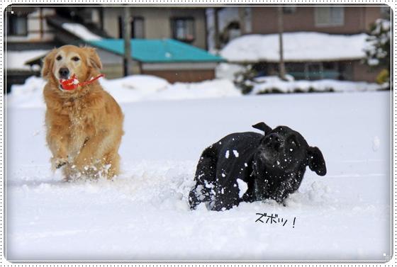 2012,2,20雪遊び7